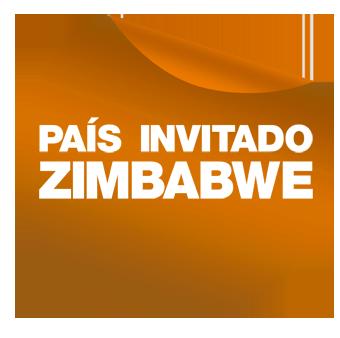 ZIMBABWE baja resolucion